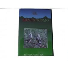DVD Silvestrisno