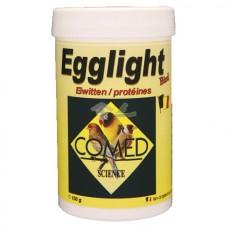 Egglight Bird