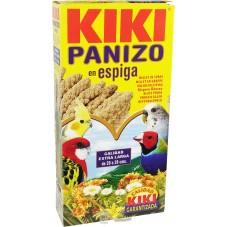 KIKI Panizo en espiga