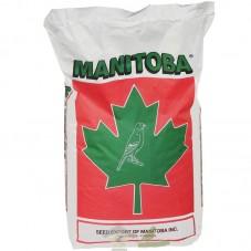 Mxt. Canarios T5 (Manitoba)