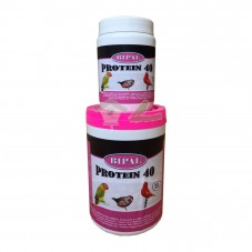 Bipal Protein 40