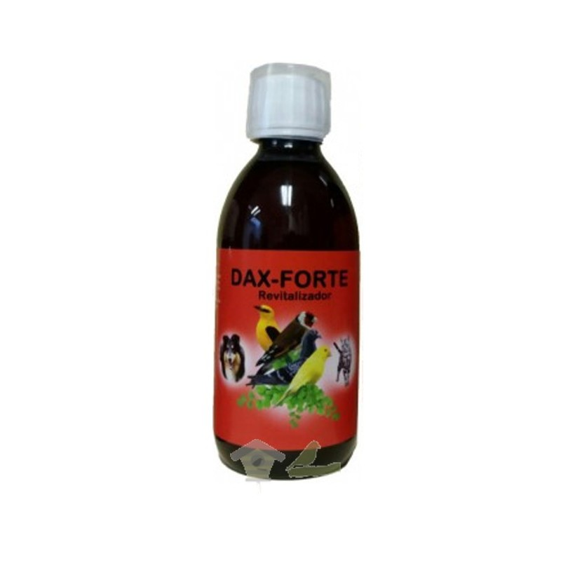 Dax Forte